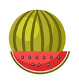 whole ripe watermelon and small slice isolated vector image vector image