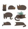 black fluffy cats set cute cartoon funny lying vector image vector image