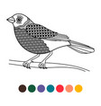 black line doodle bird coloring page poster vector image