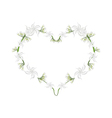 Cape Jasmine Flowers in A Heart Shape vector image vector image