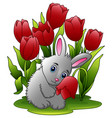 cartoon rabbits with flowers on a white background vector image vector image