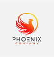 modern abstract phoenix logo icon template vector image vector image
