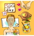 Spa woman gets relax with honey vector image