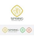 spring logo design vector image vector image