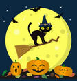 a halloween cat in a witch hat flies on a vector image