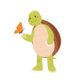 cute and funny turtle looking at pretty butterfly vector image