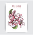 hand drawn colorful postcard with apple blossom vector image vector image