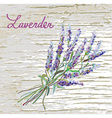 Lavender rustic background with nice design vector image vector image