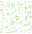 Seamless pattern of plants and herbs floral vector image