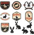 set rabbit meat labels badges and design vector image vector image