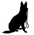 Shepherd with Leash vector image vector image