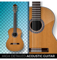 acoustic guitar isolated on transparent background vector image vector image