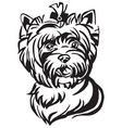 decorative portrait of dog yorkshire terrier vector image vector image