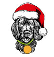 dog in santa stocking hat santa claus christmas vector image vector image