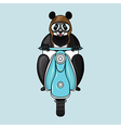 Panda in helmet goes on scooter Hand drawn in vector image