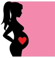 pregnant woman with heart vector image vector image