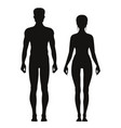 silhouette sporty male and female standing vector image vector image