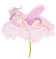 Sleeping Pixy Fairy vector image vector image