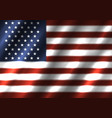 usa national flag background vector image