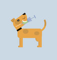 vaccination dog logo vector image