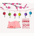 blossom chinese new year of pig lantern and vector image vector image