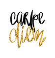 carpe diem - poster with handdrawn lettering vector image