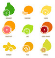 citrus fruits flat set whole fruits and vector image vector image