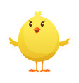 cute little cartoon chick waiting something vector image vector image