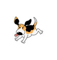 happy cartoon beagle dog running with tongue out vector image vector image