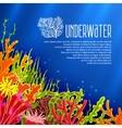 underwater corals poster vector image vector image