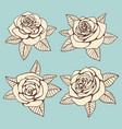 Vintage hand drawn roses with leaves design