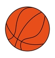 basketball sport ball equipment icon vector image vector image