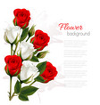 beautiful getting card with colorful roses vector image vector image