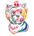 colorful decorative portrait of dog yorkshire vector image vector image