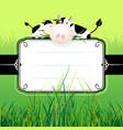 cute cow label vector image