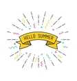 Hello summer poster flat design vector image vector image