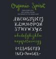 organic spirit brush script alphabet vector image