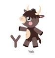 alphabet letter y yak