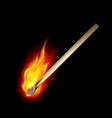 burning match on a black background for design vector image vector image