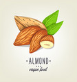 colourful almond icon isolated on background vector image vector image