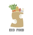 eco food vector image vector image