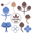 Flax vector image vector image