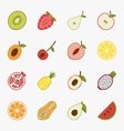 Fruit icons with white background eps10 vector image vector image