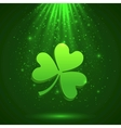 Green clover in the magic light background vector image