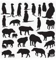 meerkat and tapir silhouettes vector image