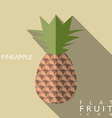 Pineapple flat icon with long shadow vector image