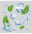 realistic ice cubes mint green leaves set vector image vector image