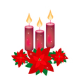 Red Poinsettia Flowers and Three Christmas Candles vector image vector image