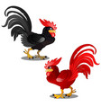 two animated cartoon rooster black and red vector image vector image