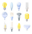 collection of different bulbs vector image vector image